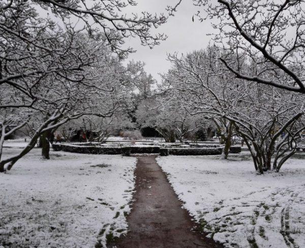 Schnee in Deutschland